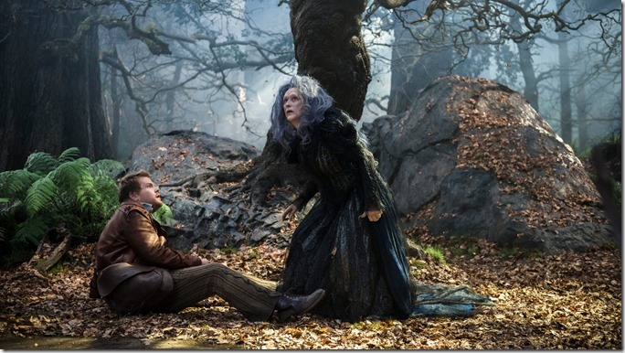 Into The Woods (6)