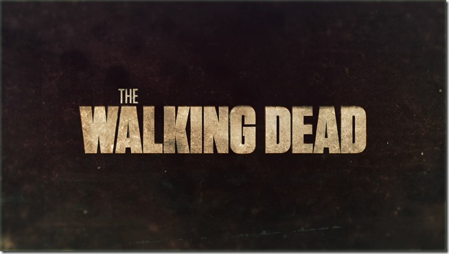 Walking Dead - Seizoen 4 (20)