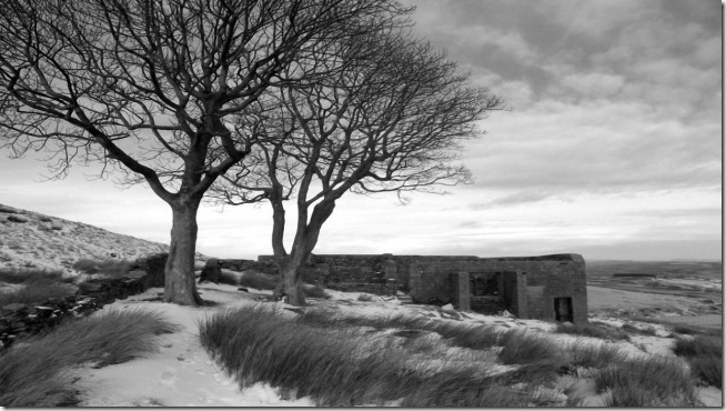 Wuthering Heights '39 (2)
