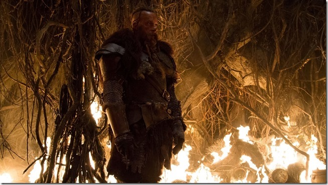 Last Witch Hunter (15)