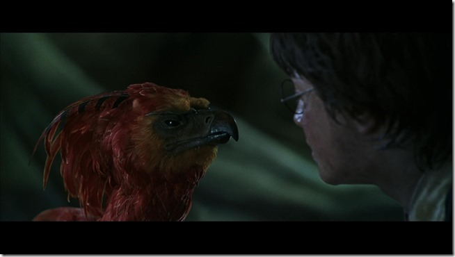 Harry Potter and the Chamber of Secrets (3)