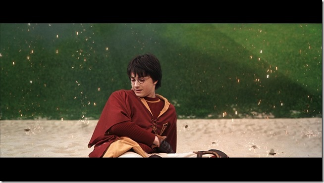 Harry Potter and the Chamber of Secrets (7)
