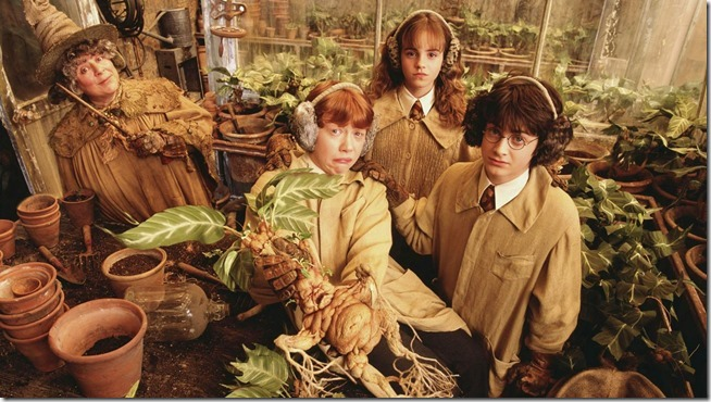 Harry Potter and the Chamber of Secrets (8)