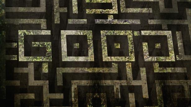 maze runner (15)