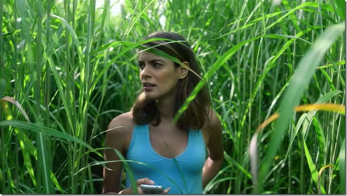 In The Tall Grass (2)