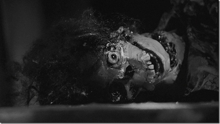 Night Of The Living Dead (9)