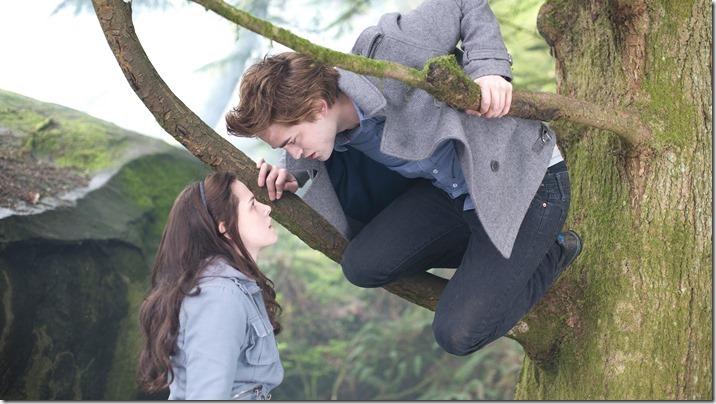 Twilight (13)