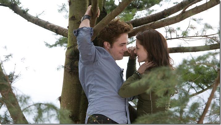 Twilight (8)