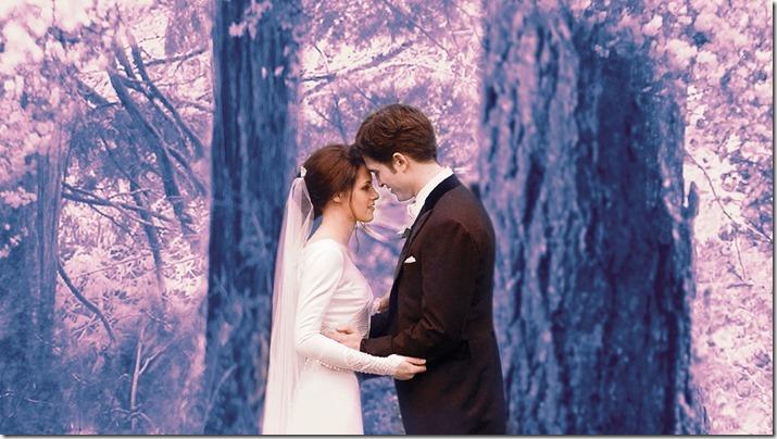 Twilight - Breaking Down - Part 1 (7)
